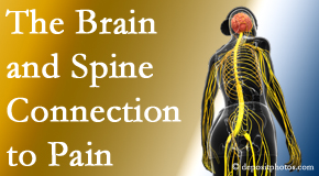 Cross Chiropractic Center looks at the connection between the brain and spine in back pain patients to better help them find pain relief.