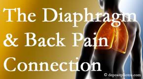 Cross Chiropractic Center recognizes the relationship of the diaphragm to the body and spine and back pain.