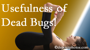 Cross Chiropractic Center finds dead bugs quite useful in the healing process of Sandy Springs back pain for many chiropractic patients.